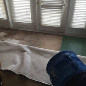 home water damage insurance claim denied