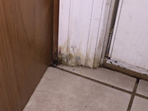 water damage to door frame help